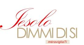 Logo_Jdds_definitivo_pantoni